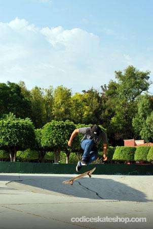 Jueves Skate La Alameda Querétaro
