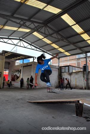 Concurso Skate Inadaptadas León Guanajuato