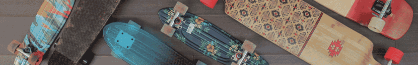 Longboards y Cruisers