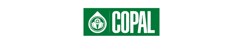 Copal Skateboards
